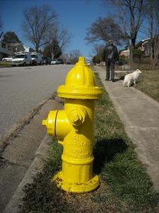 hydrant-96509_1280