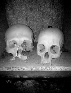 skull-775162_1920